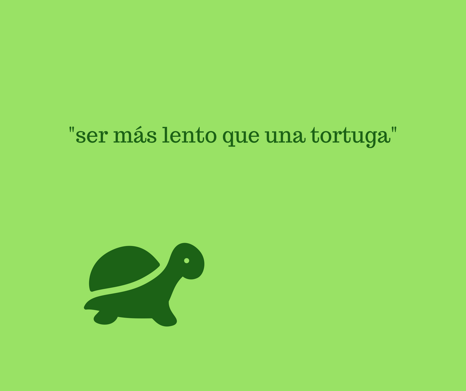 how-do-we-say-when-someone-is-slow-in-spanish