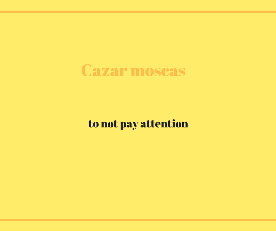 how-do-you-say-cazar-moscas-in-english