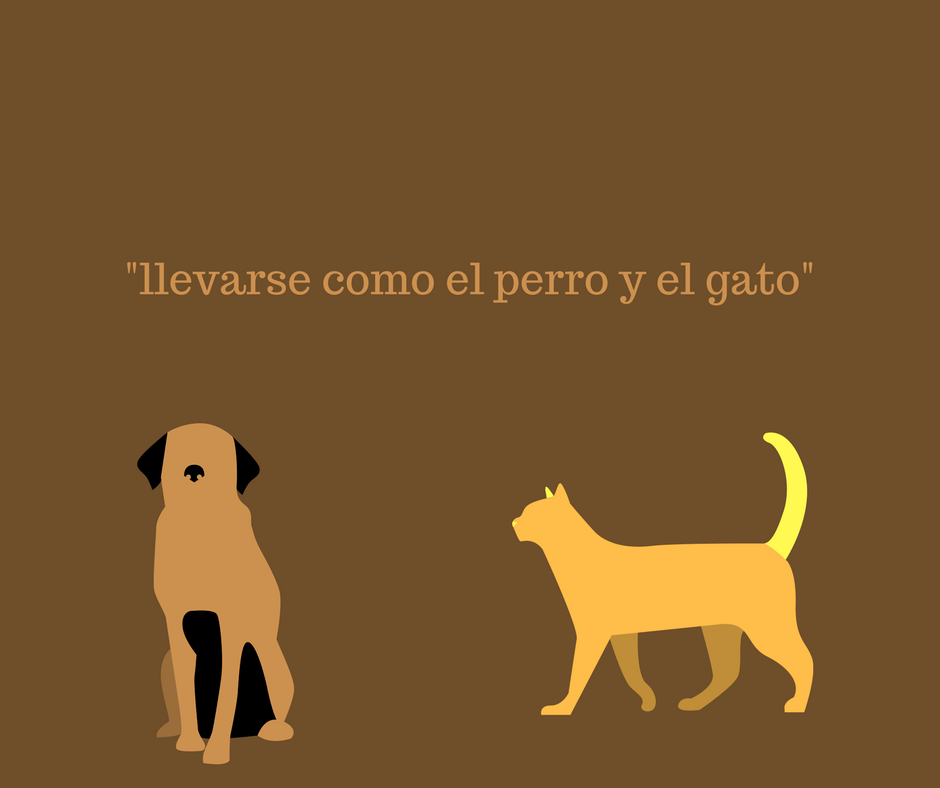 to-fight-like-a-cat-and-a-dog-in-spanish